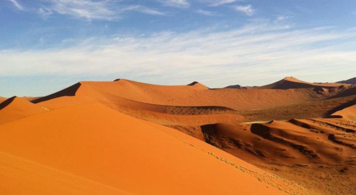 サジーの自生する砂漠地帯は気温の変化がすごくてつらい。