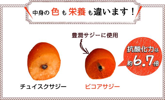 img_comparison